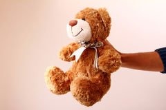 Man's hand holding brown teddy bear royalty free stock image