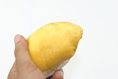 Man's hand holding durian isolate Stock Photography