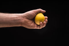 Man`s hand holding a lemon isolated on a black background Stock Image