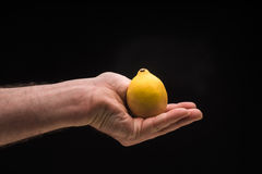 Man`s hand holding a lemon isolated on a black background Royalty Free Stock Images