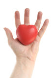 Man's Hand Holding a Red Heart Stock Images