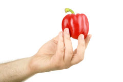 The man's hand holds sweet red pepper Royalty Free Stock Photography