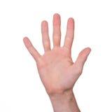 Man's hand isolated Stock Photos