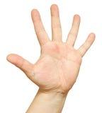 Man's hand Stock Photography