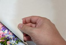 Man`s hand open paper corner revealing colorful flower view. royalty free stock image