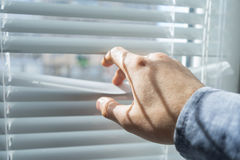 Man`s hand opens the blinds or jalousie in sunny day. Stock Photography