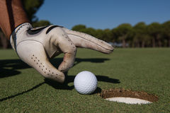 Man`s hand putting golf ball in hole Royalty Free Stock Photo