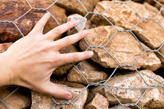 Man`s hand on a stone wall Stock Photo
