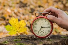 The man`s hand stops alarm clock next to a yellow autumn leaf. royalty free stock photography