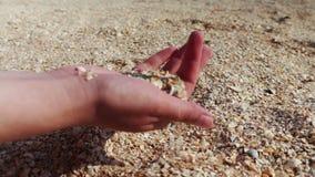 A man's hand takes seashells, sand on the beach stock video