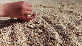 A man's hand takes seashells, sand on the beach stock footage