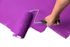 Man`s Hand Using Painr Roller with Purple. Man using paint roller with purple over white surface Royalty Free Stock Photography