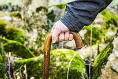 Man's hand with walking stick Stock Photography