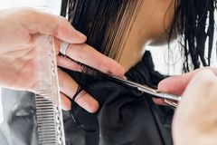 Man`s hands cut and comb female dark brown hair in a beauty salon with mirrors.  stock images