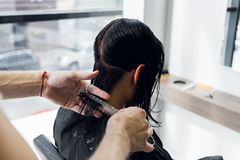 Man`s hands cut and comb female dark brown hair in a beauty salon with mirrors.  stock image