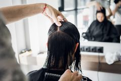 Man`s hands cut and comb female dark brown hair in a beauty salon with mirrors.  stock photography
