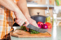 Man's hands cutting greenery Stock Images