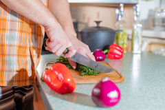 Man's hands cutting greenery Royalty Free Stock Image