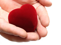 Man's hands gifting heart on valentine day. Isolated on white Royalty Free Stock Image