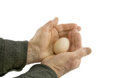 Man's hands hold egg. Isolated over white background Royalty Free Stock Images