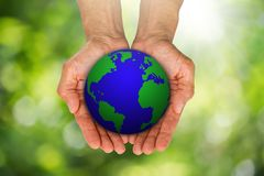 Man`s hands holding growing green sprouts from globe on blurred green bokeh background. Environment concept Stock Images