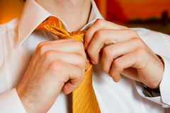 Man's hands put tie knot on wedding morning Royalty Free Stock Photo