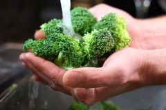 Man's Hands Washing Broccolli Vegetables in Kitchen Sink Stock Image