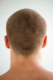 Man's head and nape Royalty Free Stock Photos