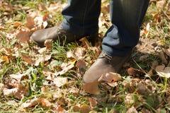 Man's legs in autumn season Royalty Free Stock Image