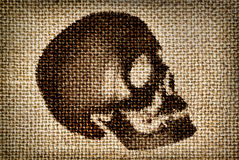 Man's skull painted brown paint on the cloth Royalty Free Stock Photography