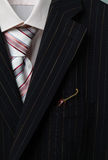 Man's suit. Pepper in a pocket of a man's suit Stock Photos