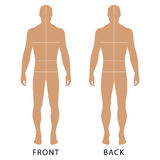 Man's template figure. Fashion man's solid template figure silhouette (front & back view) with marked body's sizes lines, vector illustration isolated on white Royalty Free Stock Images