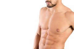 Man's torso Royalty Free Stock Photo