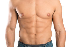 Man's torso. Showing great abdominal muscles isolated in white Royalty Free Stock Photos