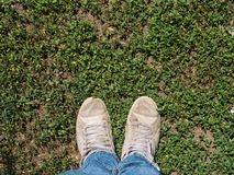 A man`s two legs on a green field. stock image