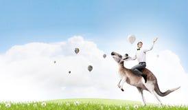 Man saddling kangaroo Royalty Free Stock Image