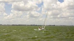 Man sailing royalty free stock image