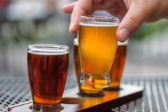 Man Sampling Beer Flight At An Outdoor Taphouse Royalty Free Stock Images