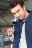 Man sampling wine production. Man sampling and smelling wine production stock images