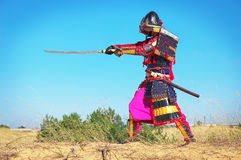 Man in samurai costume with sword. Samurai in ancient armor in a field with sword. Original Character Royalty Free Stock Images