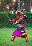 Man in samurai costume with sword. Royalty Free Stock Photo