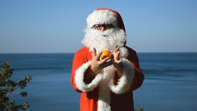 A man in a Santa Claus costume juggles tangerines on the seashore. Travel and vacation. A man in a Santa Claus costume juggles tangerines on the seashore stock video