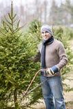Man cutting Christmas tree. Man with saw choosing fresh Christmas trees at cut your own tree farm stock photo