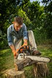 Man sawing log Royalty Free Stock Photo