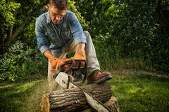 Man sawing a log. In his back yard Royalty Free Stock Images