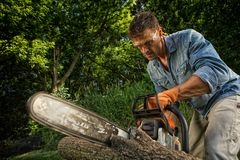 Man sawing a log. In his back yard Stock Photography