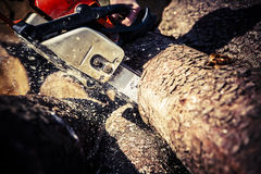 Man sawing a log in his back yard Stock Photos