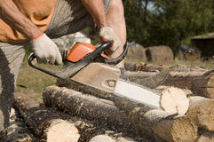 Man sawing a log Stock Photo