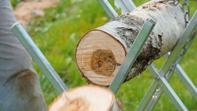 Man sawing a tree using a chainsaw for firewood. Man sawing a branch with the help of an chain saw, firewood HD stock footage