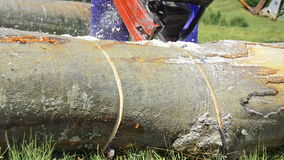 Man sawing wood chainsaw stock video footage